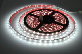 LED-Streifen in PVC-Hülle, 5m Rolle, 300 LEDs IP65 purweiß 6200K-6500K 12V