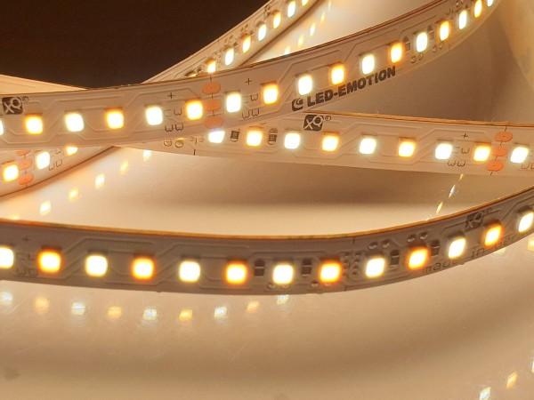 XQ Eco+ Dualwhite LED-Streifen, 160LEDs/m, 2400K 1000lm/m + 6200K 1490lm/m CRI>90, 19.2W/m, 24V
