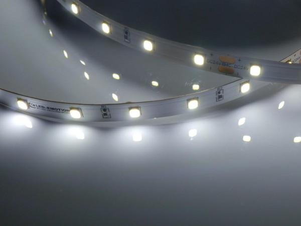 Eco-Line LED-Streifen, 6500K purweiß, 1194lm/m, 7,7W/m, 56LEDs/m, 24V