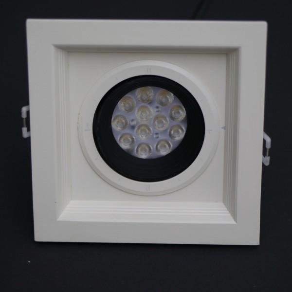 LED Deckenleuchte 240V 12x1W 5700-6350K