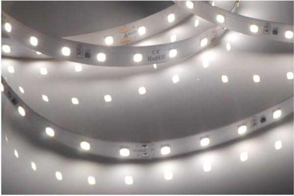 Premium BasicLine LED-Streifen, 5000K tageslichtweiß, 990lm/m, 9,6W/m, 70LEDs/m, 24V, 5m Rolle